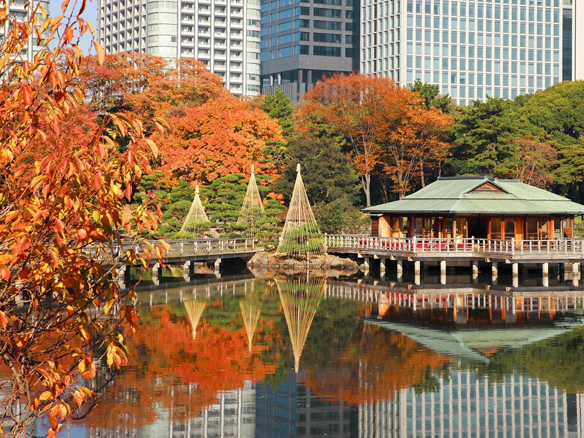 Water Taxi Cruise Kyushu X Tokyo
