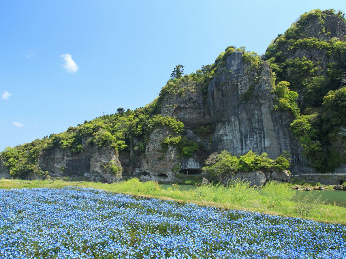 Ao-no-domon Tunnel_4