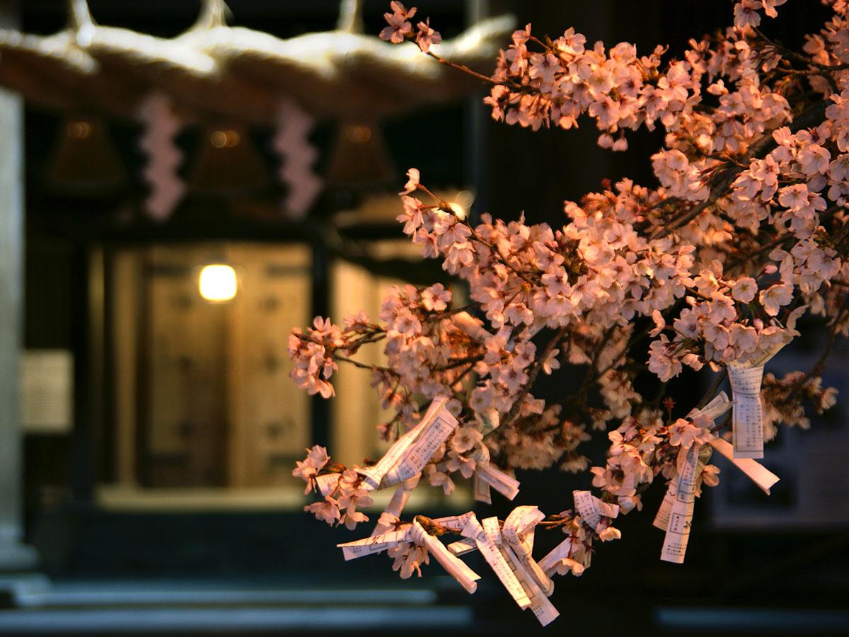 Santuario Sintoísta de Aso・Calle Comercial de Aso Monzen_3
