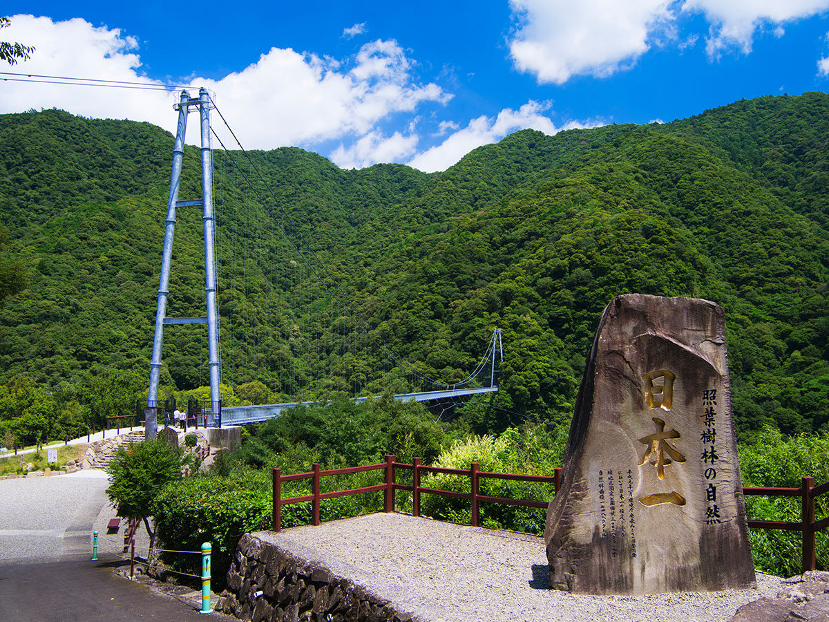 Aya Teruha Suspension Bridge _2