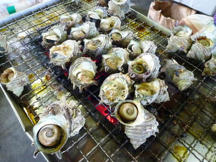 Turban Shell (Sazae) Grill Stalls_1