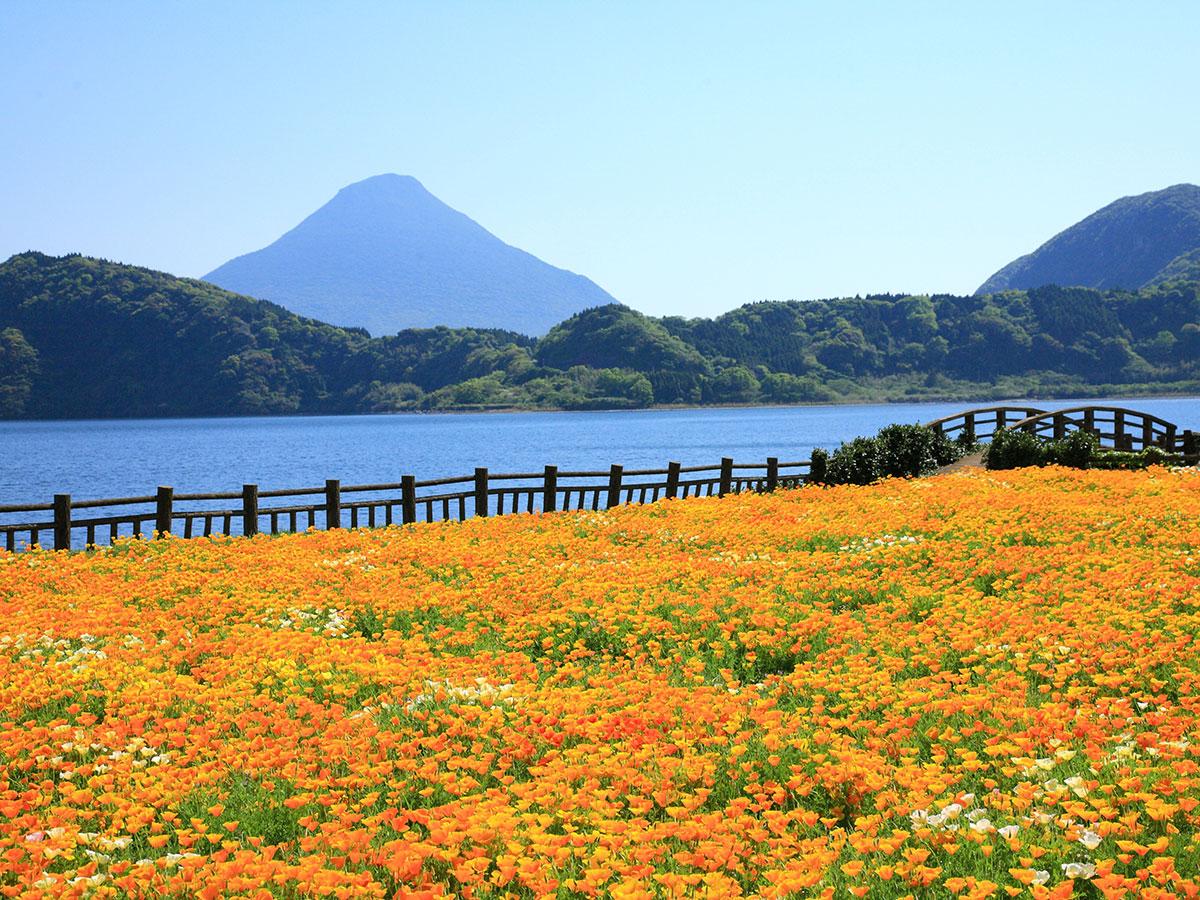 Lake Ikeda_2