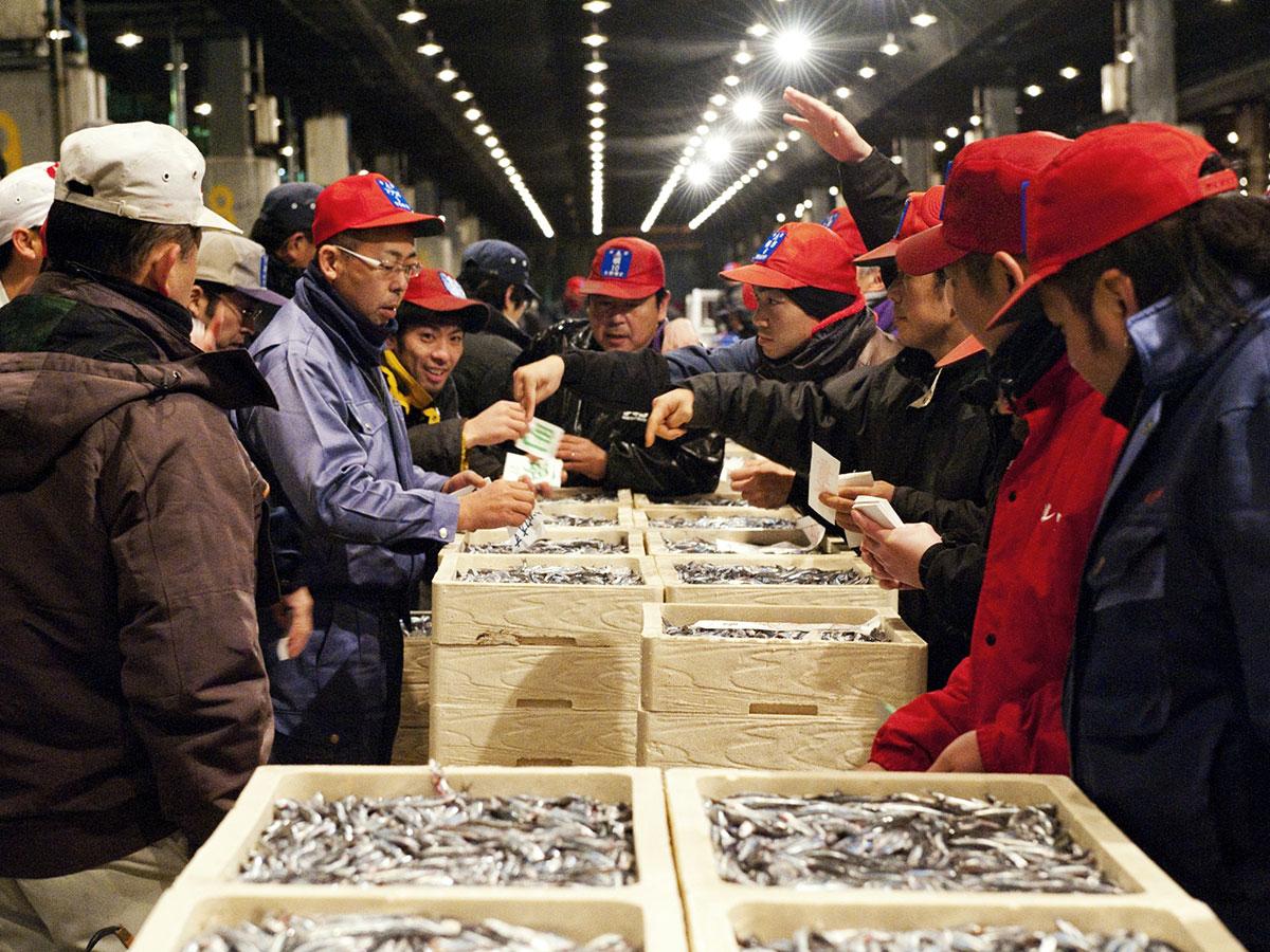 Nagahama Fish Market_1
