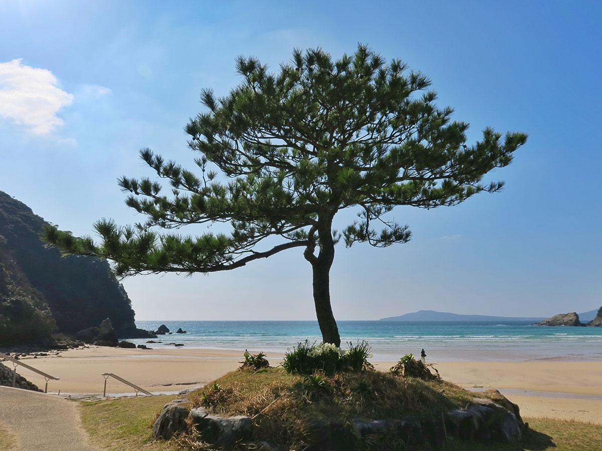 Takahama Beach_2