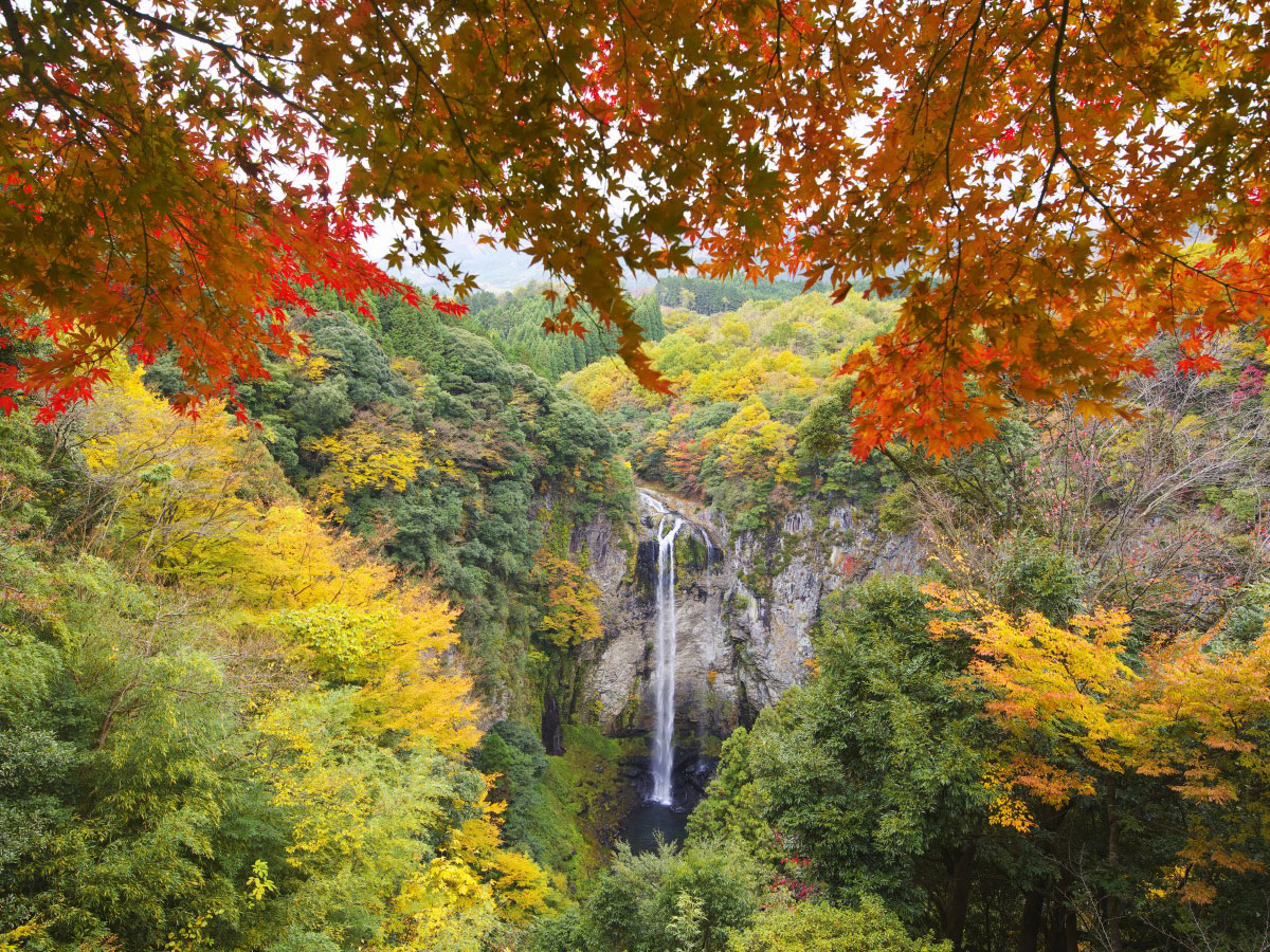 Yaba Gorge, Nakatsu (Red autumnal leaves)_4