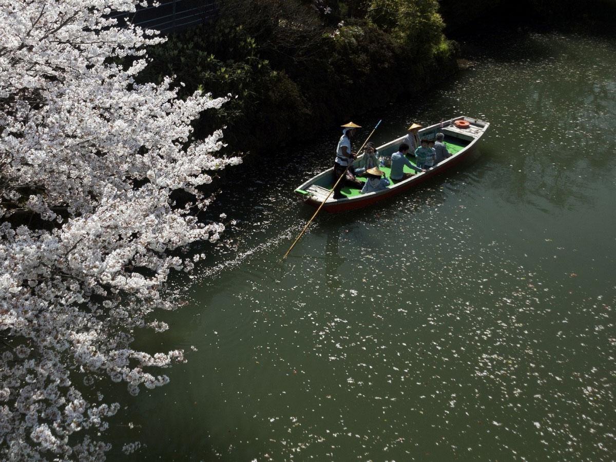 Yanagawa river cruise_2