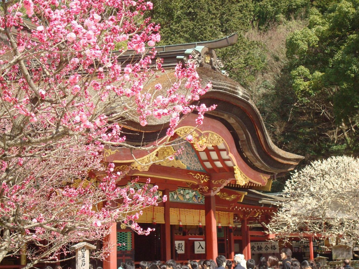 Sanctuaire Dazaifu Tenman-gu