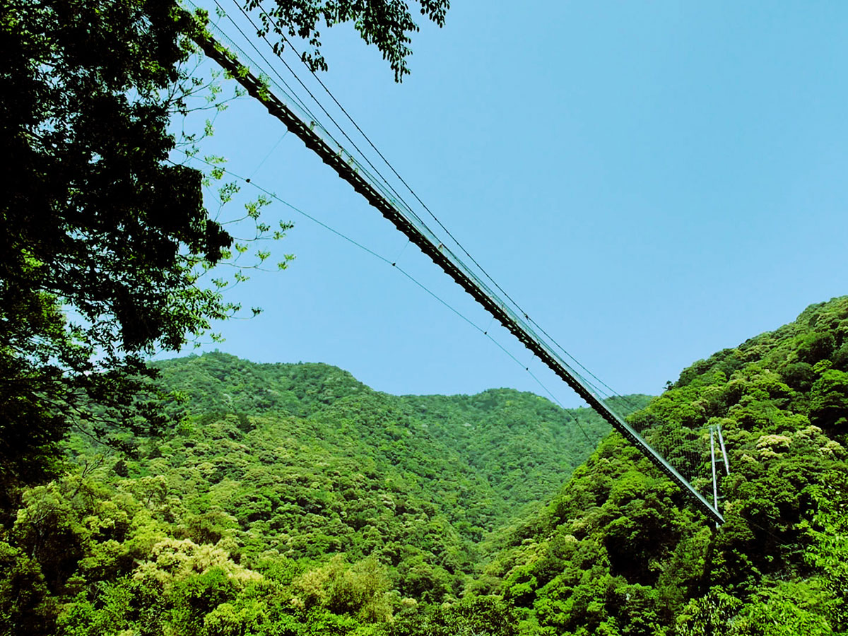 Aya Teruha Suspension Bridge _3