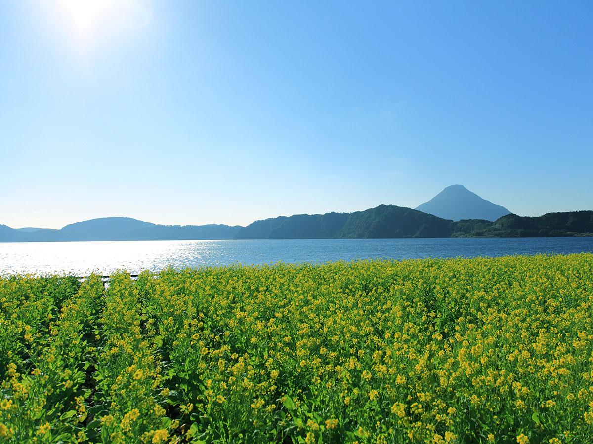 Lake Ikeda_4