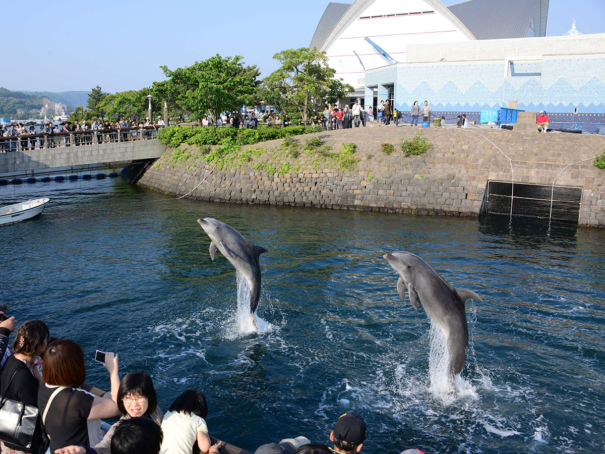 "Kagoshima City Aquarium ""Io-world""_1"