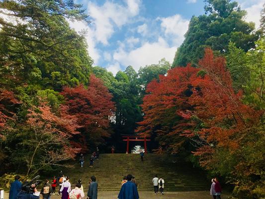 Kirishima-jingu Shrine_3