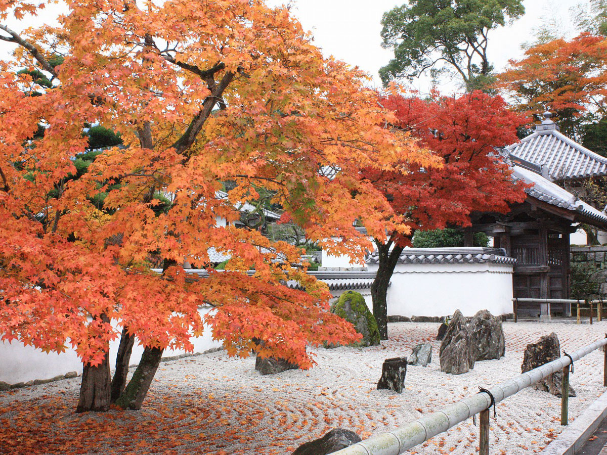 Komyozenji Temple _2