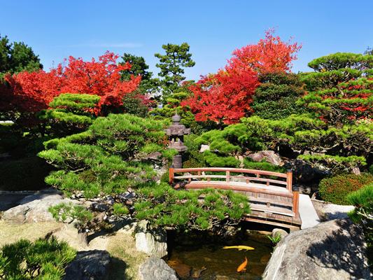 Ohori Park_3
