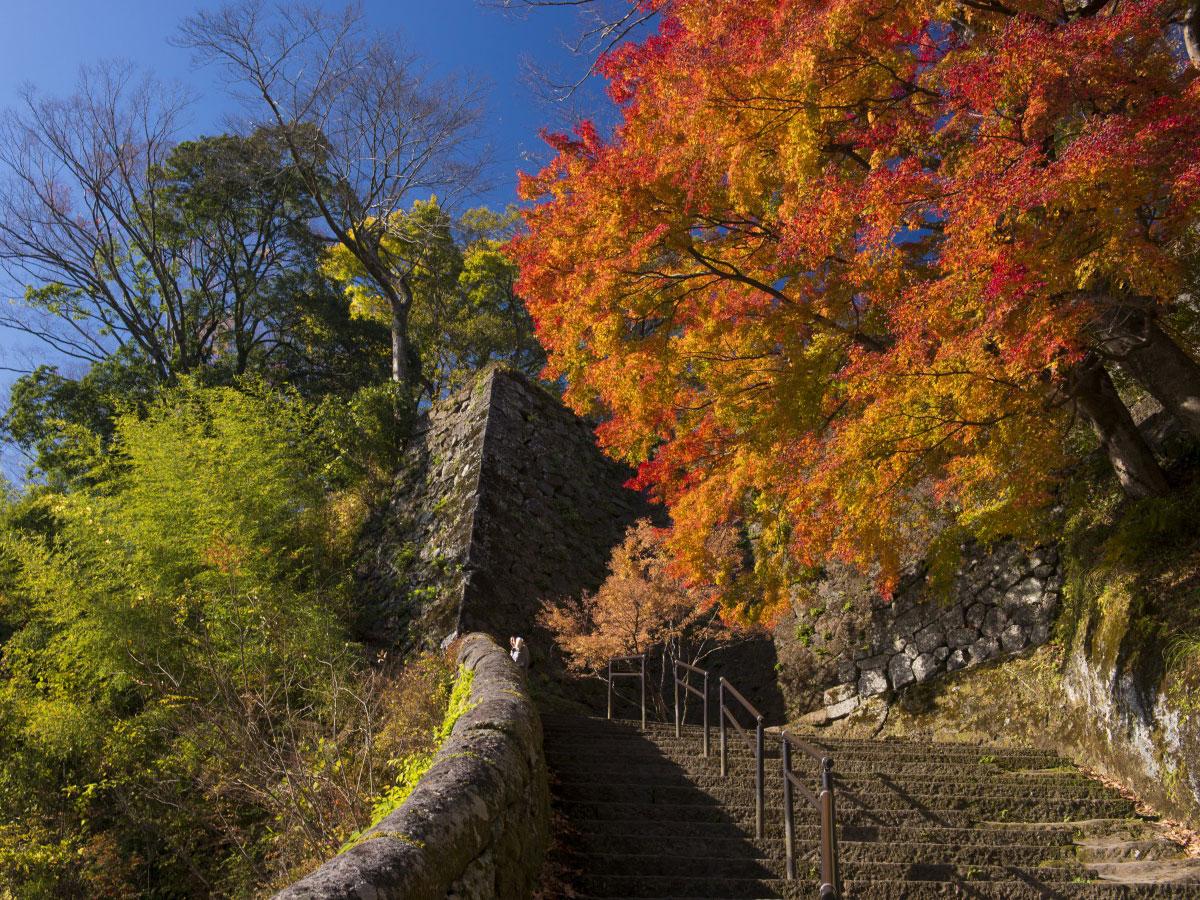 Oka Castle Ruins_2