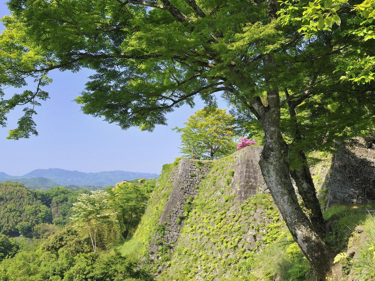 Oka Castle Ruins_3