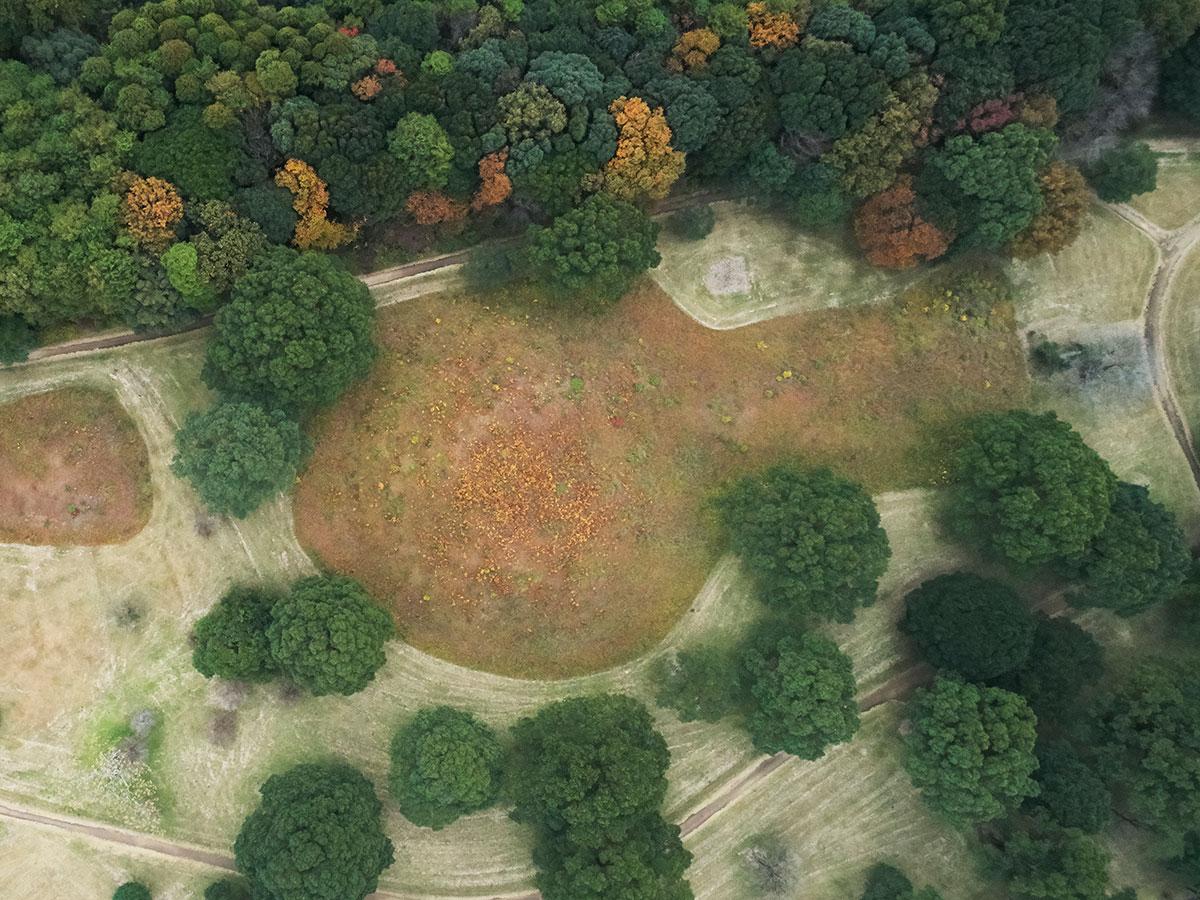 Saitobaru Kofun-gun (Saitobaru Burial Mounds)_2
