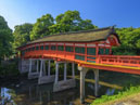 Usa Jingu Shrine_4