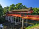 Sanctuaire Usa-jingu_4