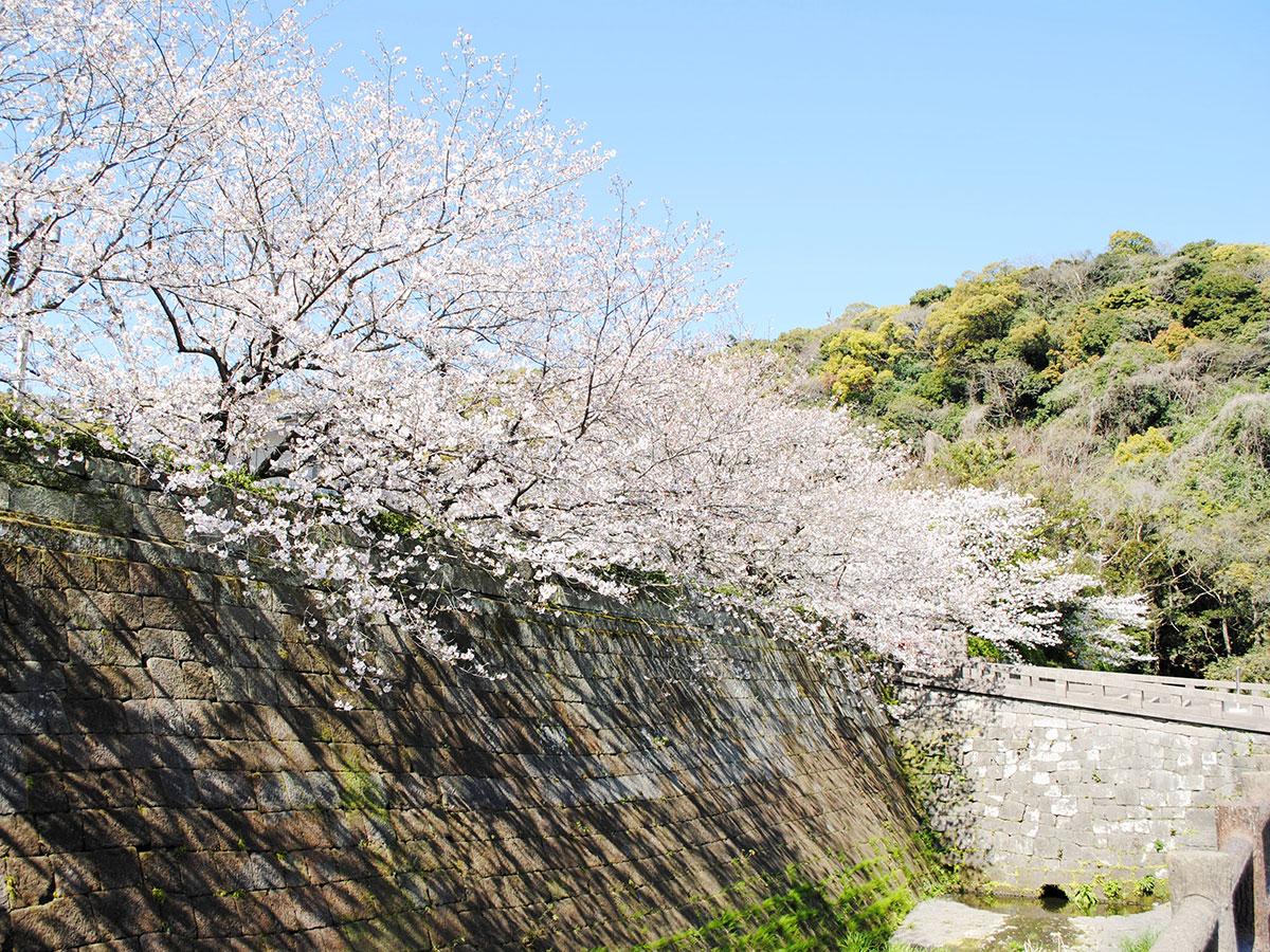 Tsurumaru Castle Ruins (Goromon Gate)_4